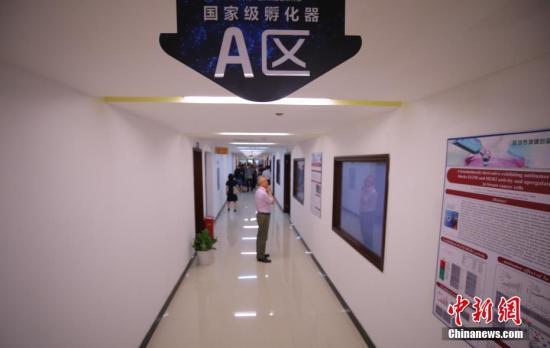 """资料图,一家国家级孵化器楼内驻满了高新机构。""""。<a target='_blank' href='http://www.chinanews.com/'>中新社</a>记者 杨可佳 摄"""